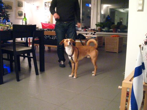 carlito-raclette-271107-003.jpg