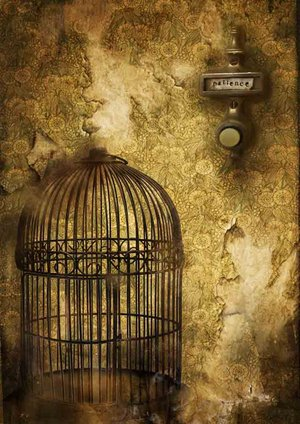 cage_by_babalisme