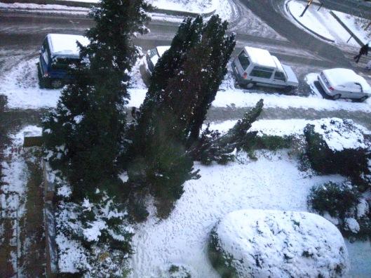 bxl-neige-jan09-003
