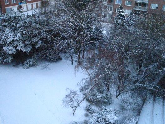 bxl-neige-jan09-007